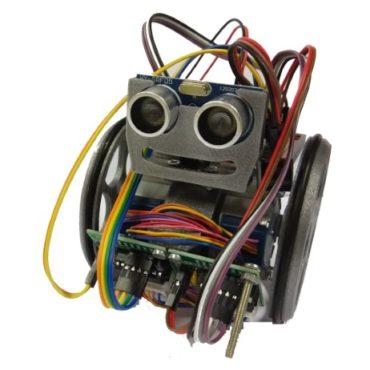 Robot EscornaX